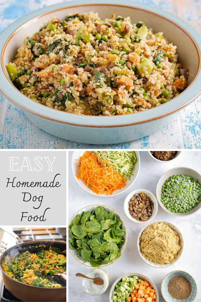 Feel great about spoiling your pup with this healthy, homemade dog food! Not only is it super easy to make, it's chock full of fresh veggies and plant protein. Both of our boys LOVE this stuff! #homemadedogfood #dogfood #dogtreats #vegandogfood #plantprotein #glutenfree #glutenfreedogfood #healthydogfood | Recipe on thecookandhim.com